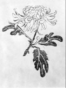 Chrysanthemum-Riceworks2-300x126 Bananas for Boys, Girls, and Everyone Else